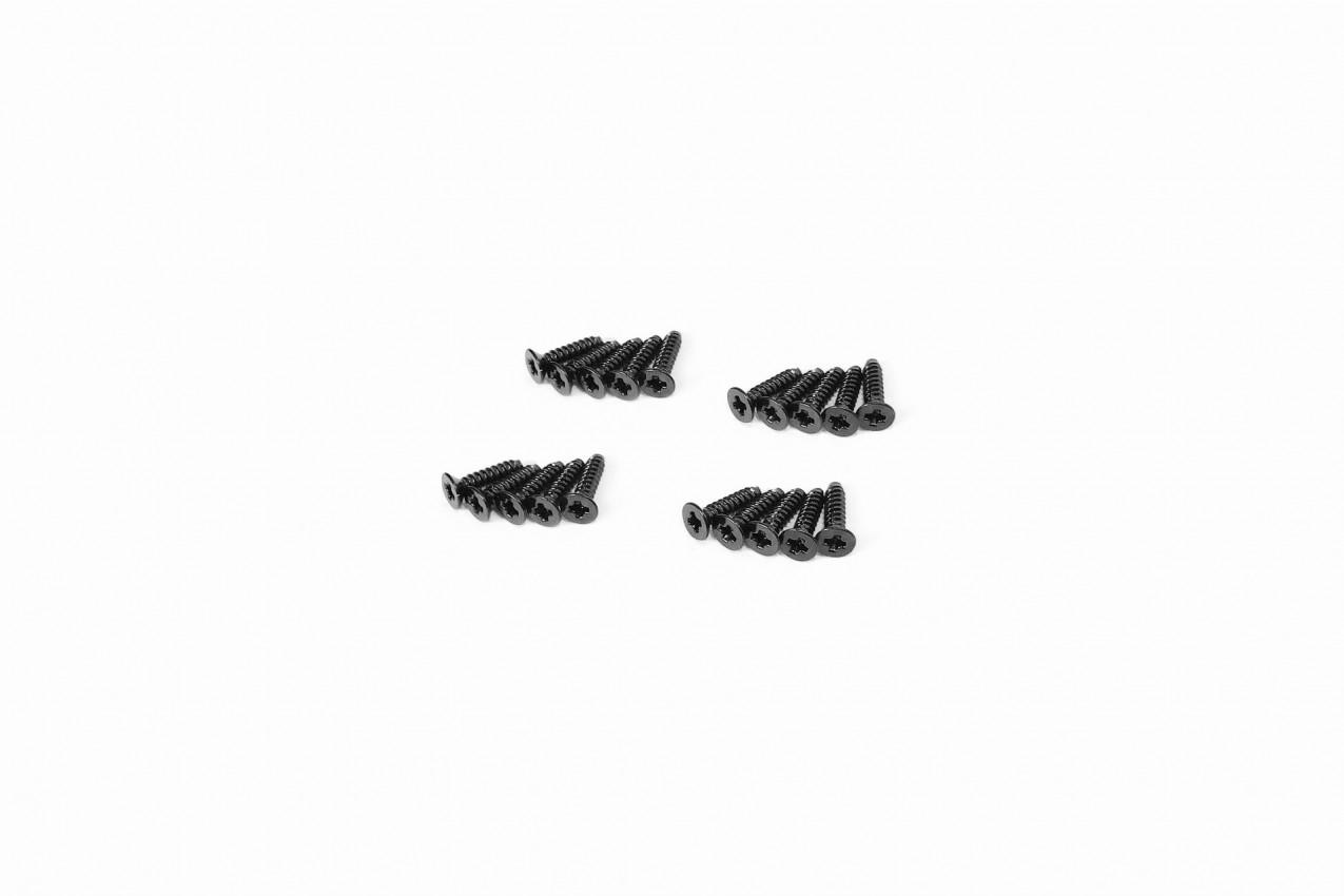 Iron Phillips Screws (KT2×8mm)